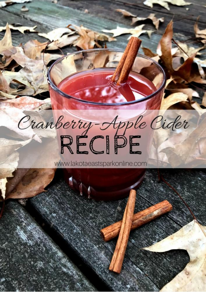 Cranberry-Apple Cider Recipe by Jessica Jones Culture Lakota East High School Spark Newsmagazine Photography by Jessica Jones